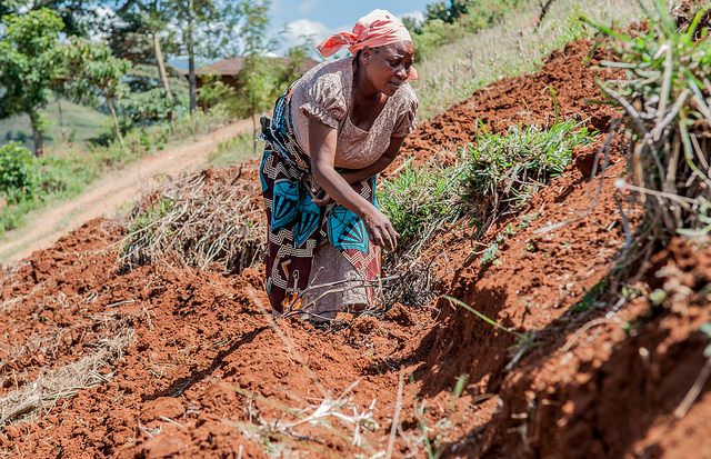 ethiopia soil degradation and overpopulation The purpose of this world day is to promote public awareness of land degradation and to draw attention to the  to maintain and restore land and soil.