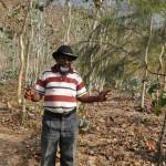 Manuel-da-Silva-in-his-land-of-eucalyptus-2