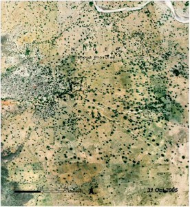 Niger-2005-276x300