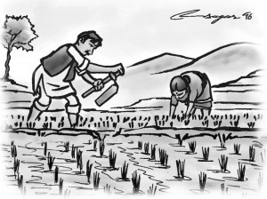 Working in field. Illustration: Ratns Sagar Shrestha
